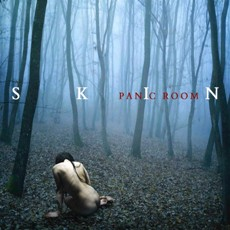 Panic Room - Skin - CD Cover